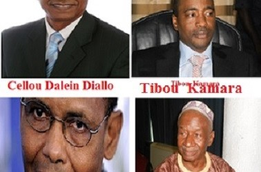 Bêtise de Mamadou Cellou : Farba Tibou reste muet comme une carpe( par Ousmane Cissé/www. guineelive.com)