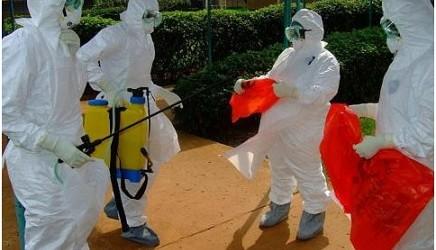Le virus Ebola persiste dans le sperme des survivants jusqu'à 12 mois.