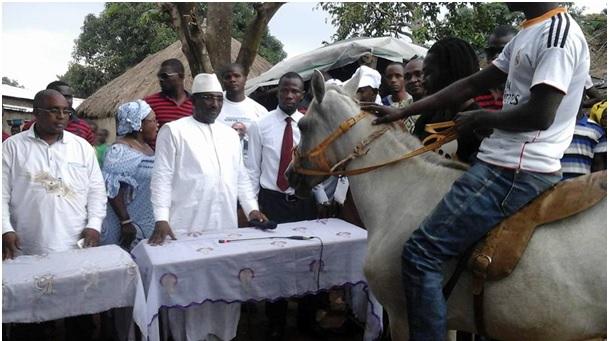 Lessandö/Faranah et Kissidougou : le Cheval de chef offert à Sidya Touré