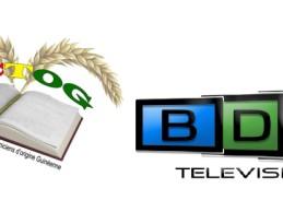 L'ACTOG, en association avec la chaine BDMTV, vous convie à sa conférence trimestrielle :