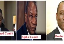 Corruption en Guinée ?  La curieuse victoire de Sable Mining au mont Nimba