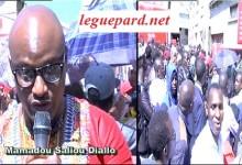 Passeport biométrique: galère et colère des Guinéens de France !