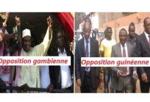L'exemple Gambien, une opportunité que l'égoïsme de Cellou Dalein Diallo a fait perdre à la Guinée. La candidature unique ! ( Par Amadou Oury Barry )