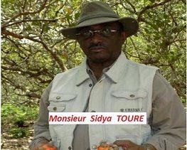 Le Saviez-vous ?  SIDYA TOURE, est le premier planteur privé de Guinée.