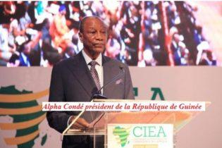 Guinée conakry/peuple guinéen, brûlez Alpha Condé et non vos pauvres parents (Par Johnny Patcheko)