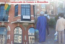Bruxelles: L'ambassade de Guinée se moque des Guinéens.( Par SAM Sylla correspondant du guepard.net à Bruxelles)
