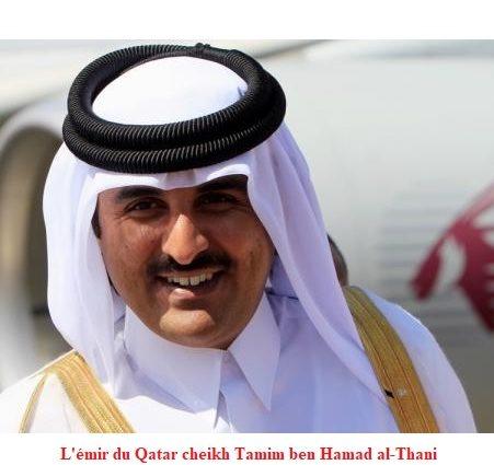 L'émir du Qatar en tournée en Afrique de l'Ouest
