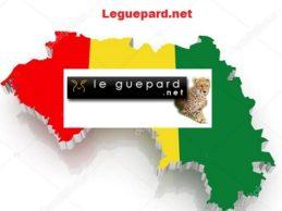 Urgent / Leguepard.net bloqué en Guinée depuis cinq jours, suite à sa révélation sur le Caporal Doumbouya nommé comandant par Alpha Condé !