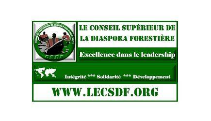 Déclaration No 1/2019 du Conseil Supérieur de la Diaspora Forestière (CSDF) : REJET DE L'IDÉE DE TROISIÈME MANDAT