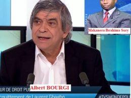 GUINEE / Les contre-vérités d'Albert Bourgi le néo-négrier de la même espèce que François Soudan de jeune Afrique.( Par MAKANERA Ibrahima Sory)