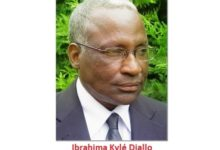 GUINEE / CELLOU mo DALEIN : FOU OU FAUX ? (Par Ibrahima Kylé Diallo)