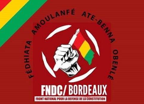 Manifestation du FNDC Bordeaux le 3 novembre 2019 contre le troisième mandat d'Alpha Condé.