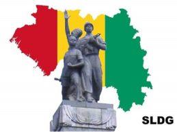 GUINEE : Un projet de changement de constitution difficilement défendable.