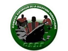 Communiqué de Presse / Le Conseil Supérieur de la Diaspora Forestière apporte un démenti à Monsieur Damaro Camara.