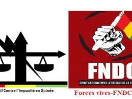 Urgent communiqué / Manifestation du 9 novembre chez Malick SANKHON au MANS / Le Collectif Contre l'Impunité en Guinée et les Forces vives-FNDC France demandent la participation massive des Guinéens de France.