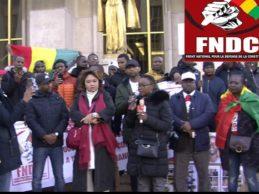 FRANCE / La grande manifestation des Forces vives-FNDC et FNDC France du samedi 1er février 2020.