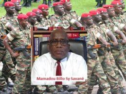 LETTRE N°8 : Aux PATRIOTES en uniforme! Hommes de rang, sous-officiers et Officiers (capitaines, lieutenants….).(Par Mamadou Billo Sy Savané)